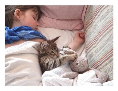 cat_autistic_child