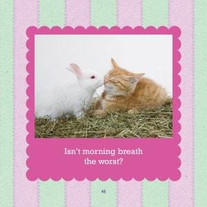 bunnies_kittens