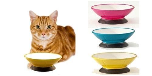 modapet cat bowl winners - Cat Bowls