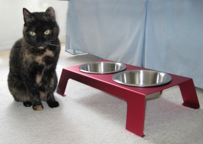 elevated_cat_feeder