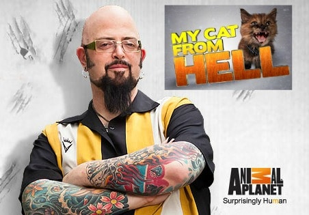 Animal planet casting couch casting now open for my cat for Jackson galaxy store