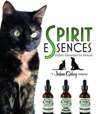 Spirit_Essences_holistic_remedies