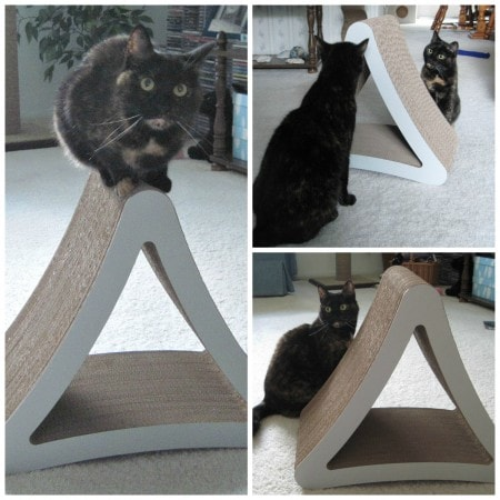 Petfusion_3_sided_scratcher