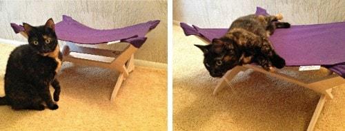 Peach_Industries_cat_hammock