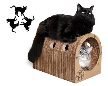 catpods