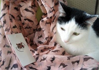cat-print-scarf