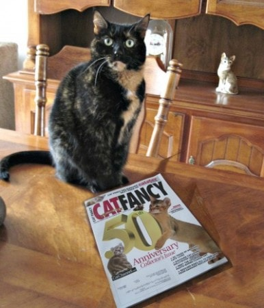 A Farewell to Cat Fancy Magazine