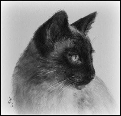 Michelle-Wolff-custom-portraits