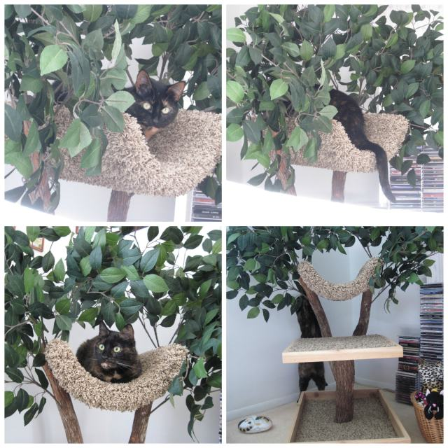 Pet Tree House collage