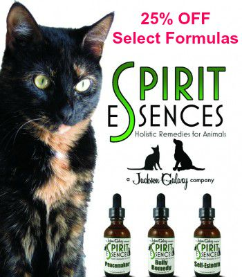 Allegra-Spirit-Essences 25 off
