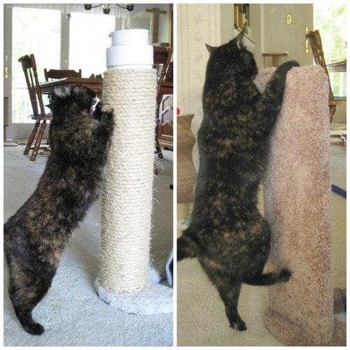 Cat Scratch Furniture Protector Home Decor