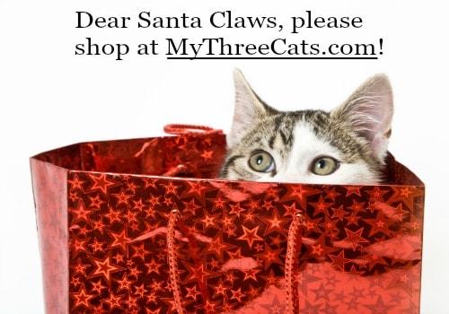 cat-in-gift-bag