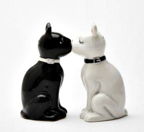cat-salt-and-pepper-shaker