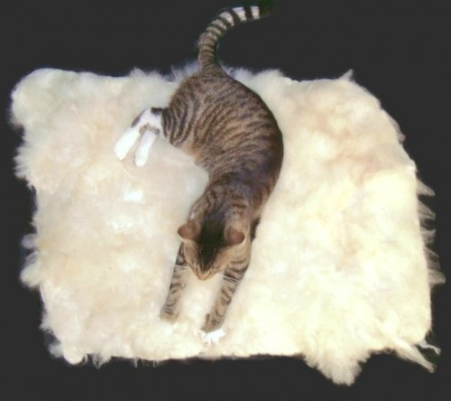 alpaca-fleece-cat-mat-bed