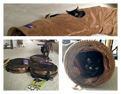 cat-tunnel