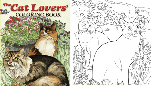 cat-lovers-coloring-book