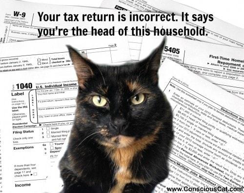 cats-taxes
