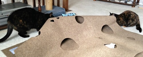 Ripple Rug Review The Conscious Cat