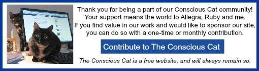 contribute banner ad