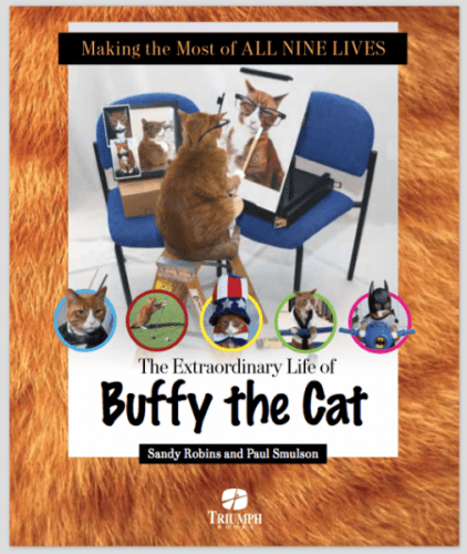 Buffy-the-Cat