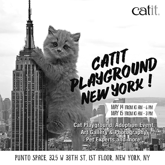 Catit-Playground-New-York