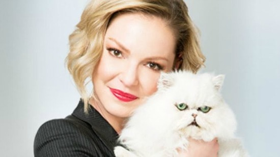 Katherine-Heigl-cat