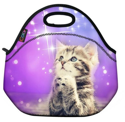 cat-lunch-bag