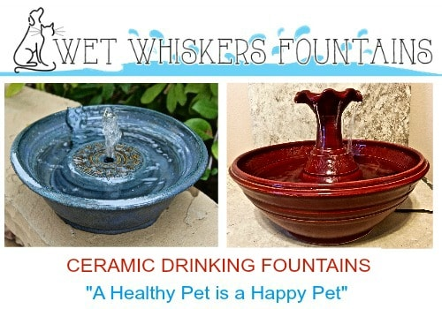 wet-whiskers-fountains-holiday-guide