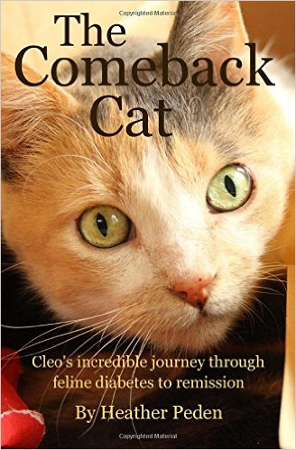 the-comeback-cat