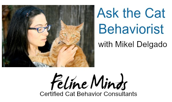 ask-the-cat-behaviorist