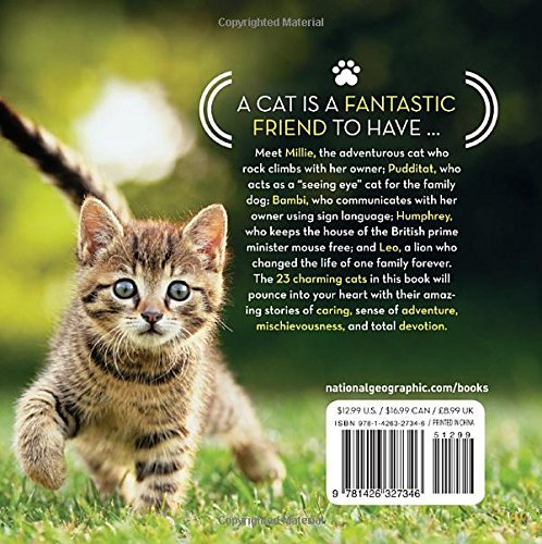cat-tales-back-cover