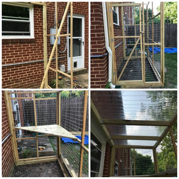 how-to-build-a-catio