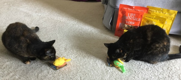 iherb-cat-toys