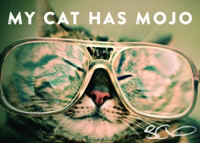 total-cat-mojo