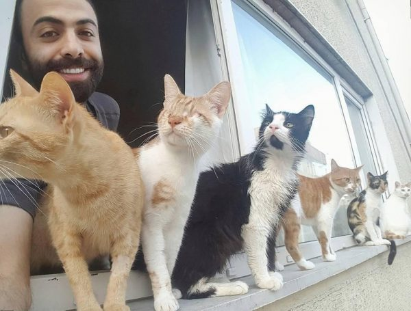 sarper-duman-cat-pianist