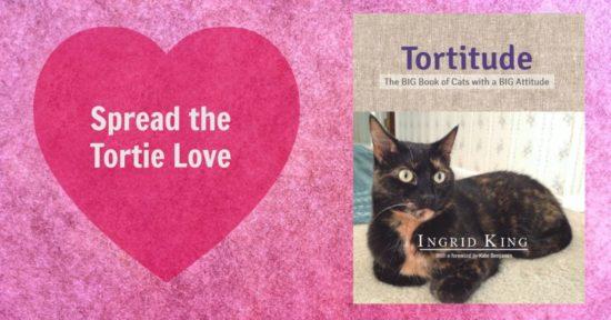 tortitude-book