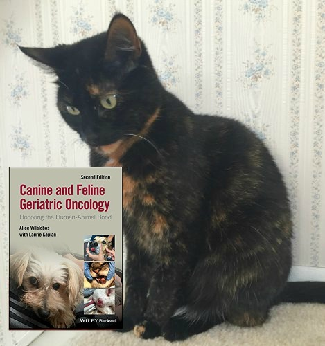 canine-and-feline-geriatric-oncology-cover