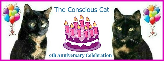 conscious-cat-9th-anniversary