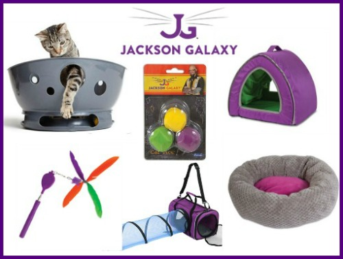 jackson-galaxy-cat-products