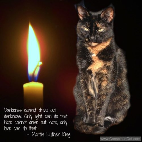 Darkness Mlk Quote Light