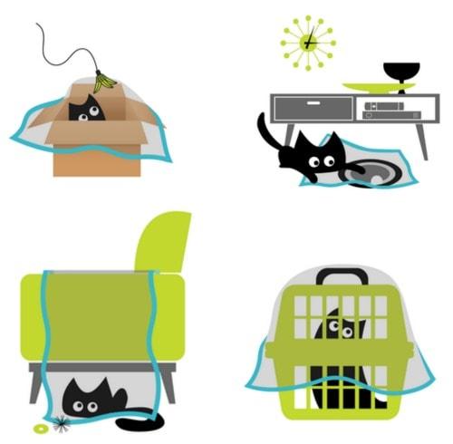 sheer-fun-for-cats