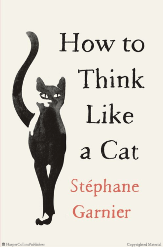 how-to-think-like-a-cat