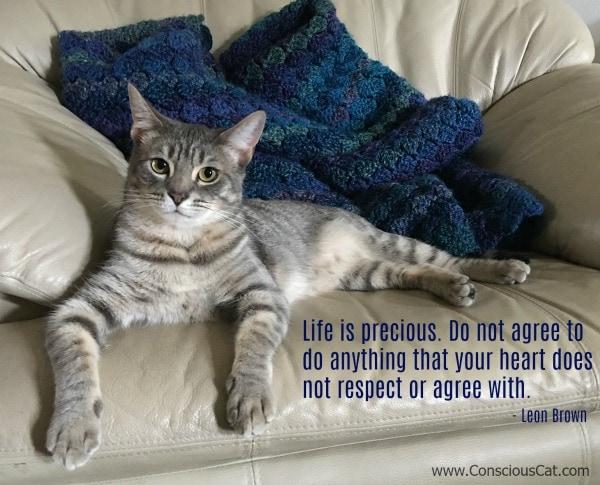 life-is-precious