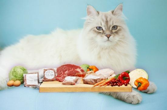 pet-food-label-ingredients