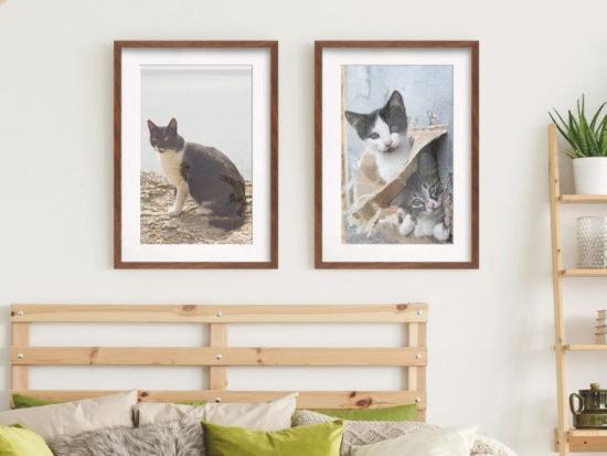 cat-prints