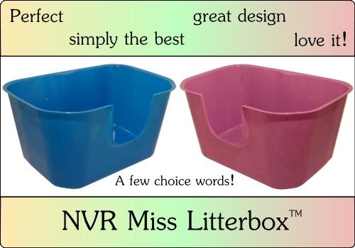 NVR-Miss-litterbox