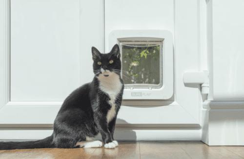 surepetcare-connect-pet-door