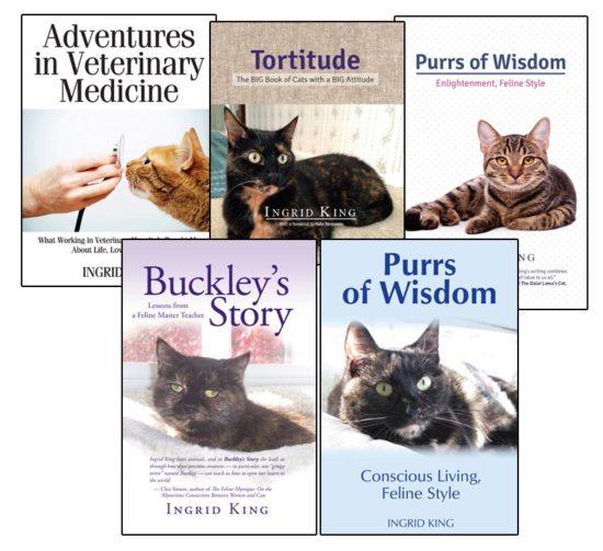 Ingrid-King-cat-books
