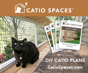 catio-spaces