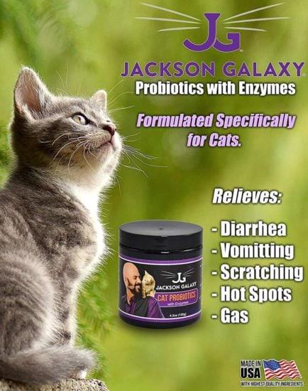 cat-probiotics